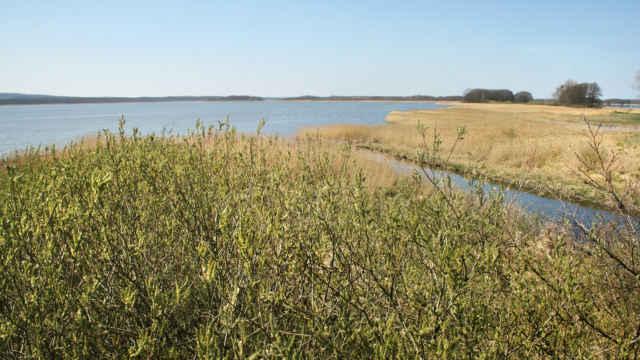 Galenbecker See